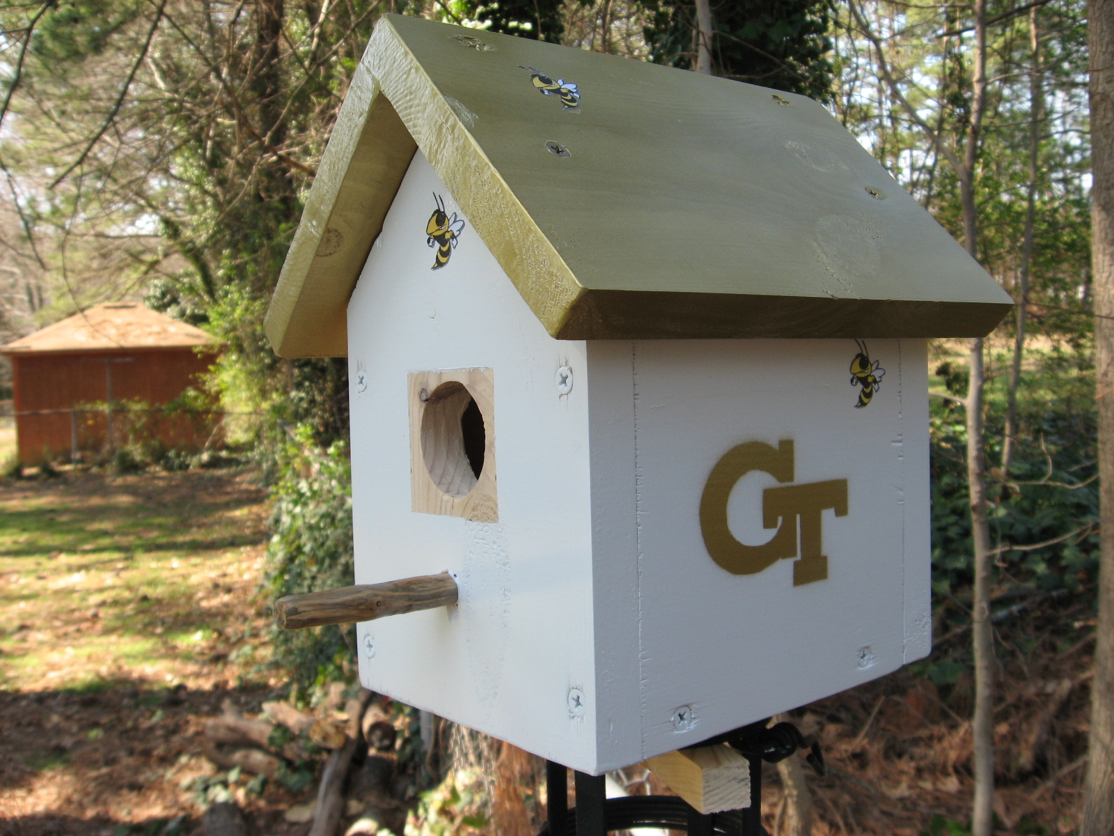 Georgia Tech Birdhouse 3-7-2007 003.jpg