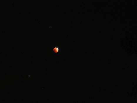 Lunar Eclipse 02-20-2008 026.jpg