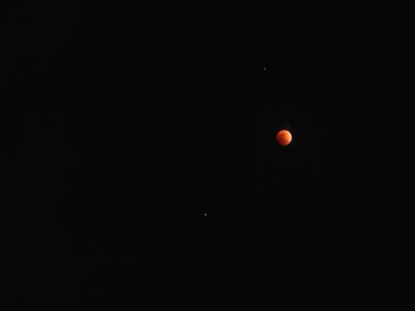 Lunar Eclipse 02-20-2008 039.jpg